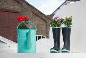 Bonus verde ed ecobonus per lavori in giardino